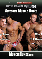 Best of Dynamite Studios Vol. 14: Awesome Muscle Daddies